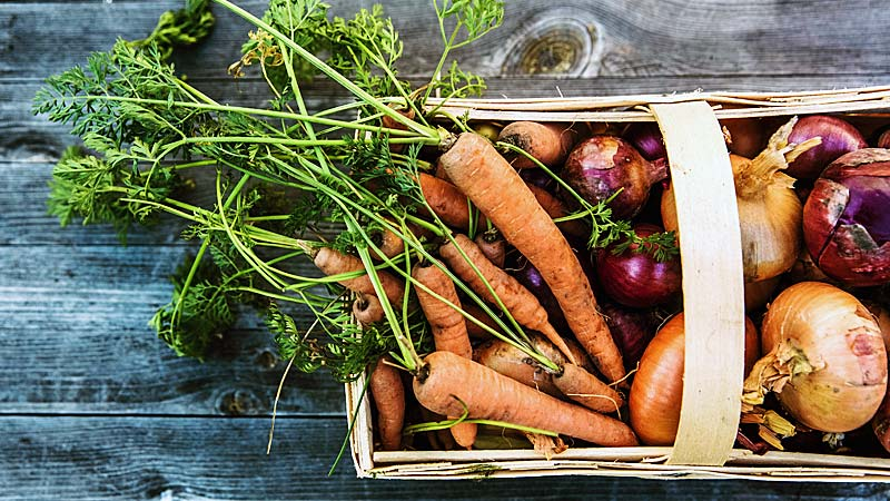 Organic Vegetables In A Trug