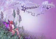 Lavender Magic Logo