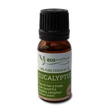 100% Essential Eucalyptus Oil, 10ml