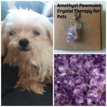 Amethyst Pawmulets