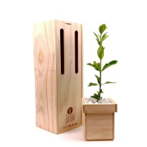 Trees Please! Gardenia Tree Gift Image