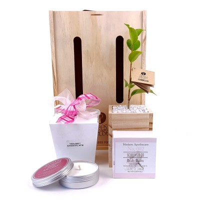 Trees Please! Pampering Tree Gift Image