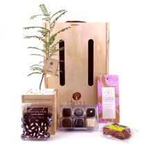 Trees Please! Double Addiction Gift Set