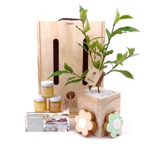 Trees Please! Honey Bee & Tree Gift