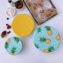 PINEAPPLES & BUTTERCUP | Reusable bowl cover set of 3