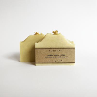 Lemon, Lime + Litsea Pumice Soap Bar Image