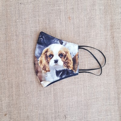 Face Mask Puppy Love Spaniel Image