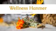 Wellness Hanmer & Animal Therapies Logo