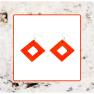 Macrocarpa Square Earrings Image