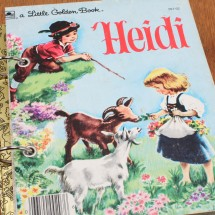 Heidi Notebook Image