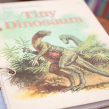 Tiny Dinosaurs Refillable Notebook Image