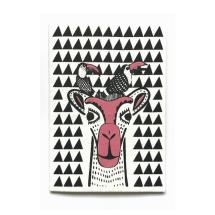 Camel + Toucan Card