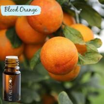 Blood Orange Essential Oil (Certified Organic)  10ml