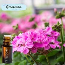 Geranium Essential Oil (Certified Organic) 10ml
