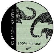Halwyn Holistics Logo