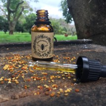 Bee Pollen Facial Oil Image