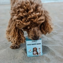 Certified Compostable Dog Waste Bags - 60 Bags