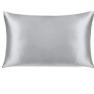 Conscious Silk Pillowcase -Silver Organic Mulberry Silk Image
