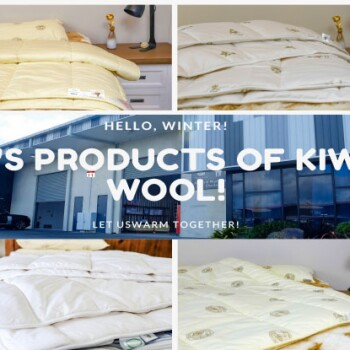 KIWI WOOL INTERNATIONAL LIMITED Store Photo