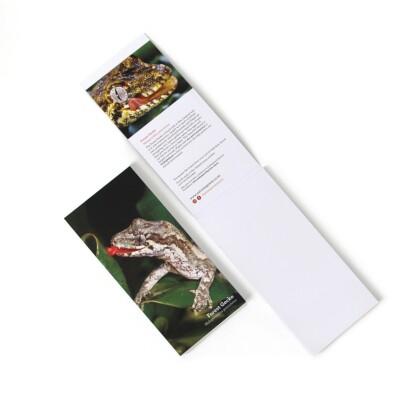 Forest Gecko jotterpad Image