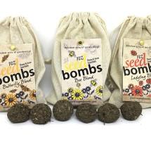NZ Seed Bombs Image